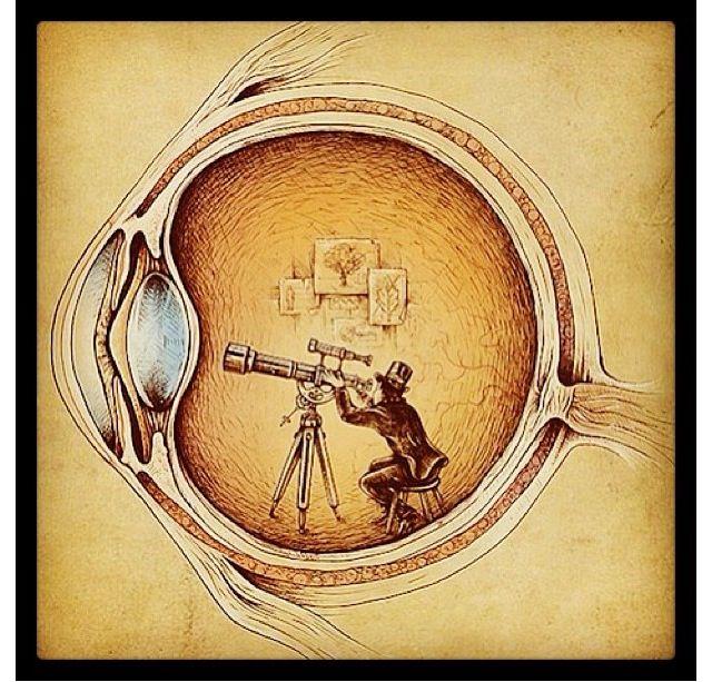 133 Best Eye Stuff Images On Pinterest Eye Art Eyes And