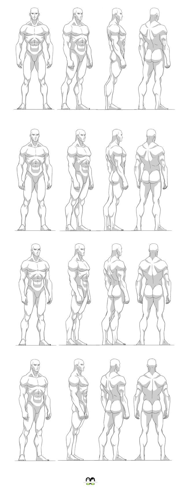 157 best Anatomy for artists: Back and Chest images on Pinterest ...