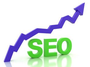 SEO professional service in India by the professionals company provides you an array of services to bring about better results and top rankings over the search engine results from pages. http://www.creationinfoways.com/seo-services-company.html