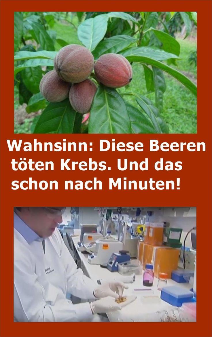 Wahnsinn: Diese Beeren töten Krebs. Und das schon nach Minuten! | drndex.com