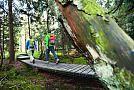 Wandern auf dem Harzer Hexen-Stieg