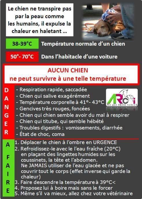 Attention à la chaleur !