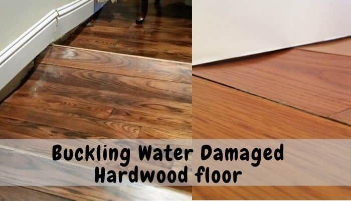 Hardwood Floor Buckling Water Damage Floor Techie In 2020 Hardwood Floors Flooring Hardwood