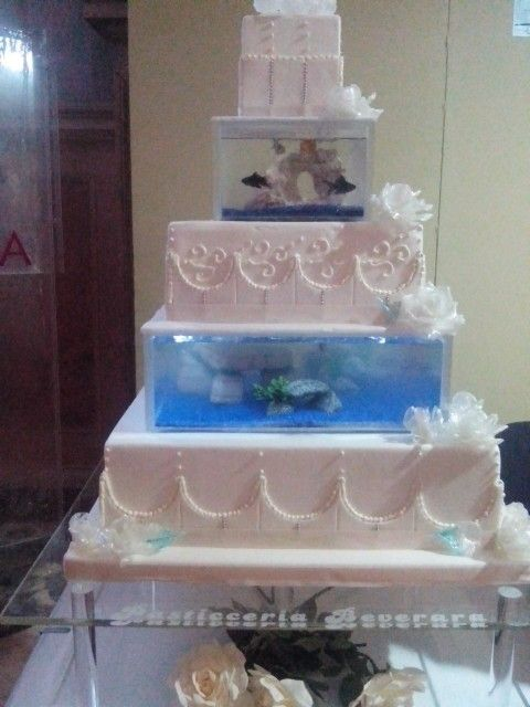 17 best images about food on pinterest natale valentine for Fish tank cake designs
