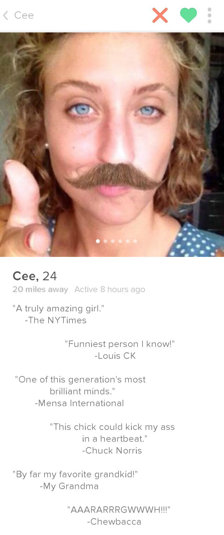 Let S Face It Dating Is Literally The Worst These Profiles Make It Slightly More Amusing Funny Tinder Profiles Tinder Humor Tinder Profile