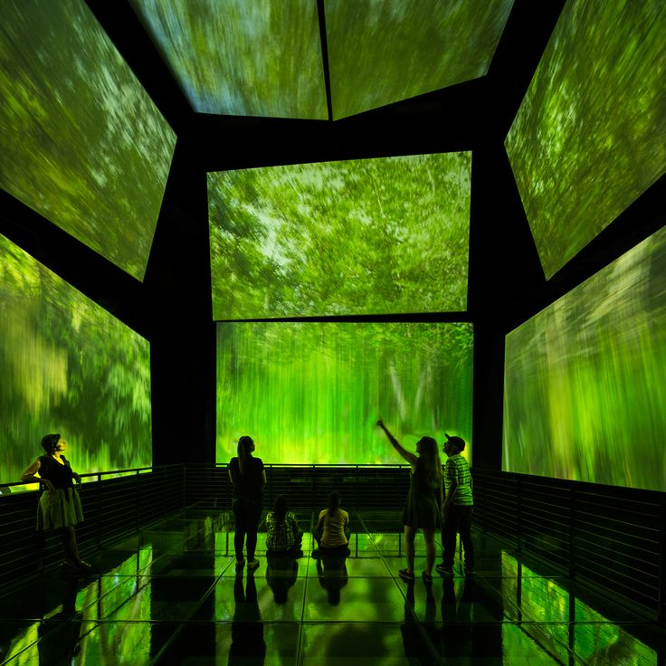 ghery's biomuseo of panama