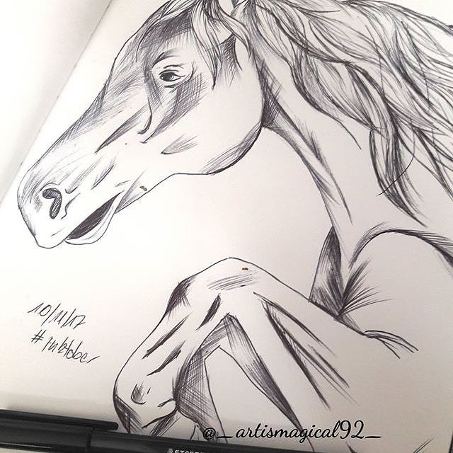 Reposting @_artismagical92_: #inkdrawing of a running or jumping horse with strange anatomie... it's been a while since i was drawing horses or animals in general... #inktober2017 #inktober #instaart #art #horse #horsejumping #artstagram #artstudio #artinsta #artist