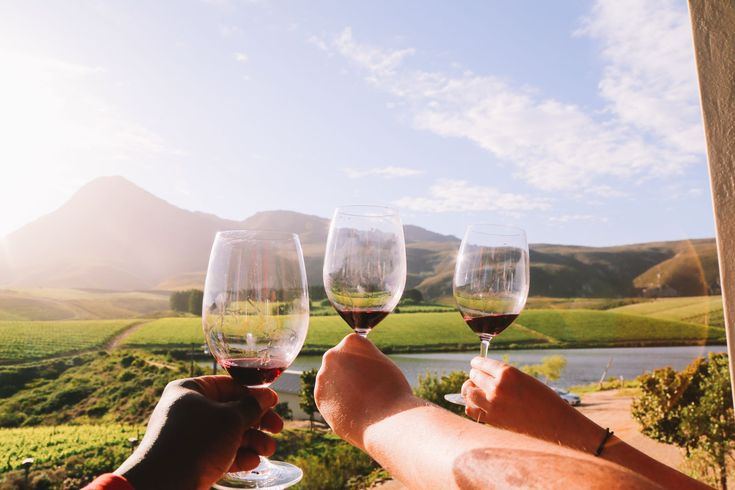 This Is The Best Place To Go Whale Watching In South Africa... And It Has Wine! - Hand Luggage Only - Travel, Food & Photography Blog
