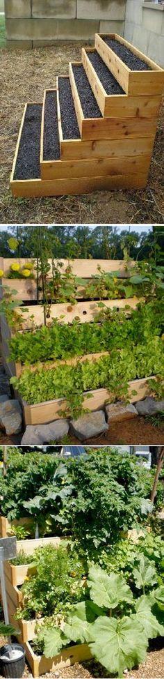 vertical vegetable and herbs garden - Small Vegetable Garden Ideas