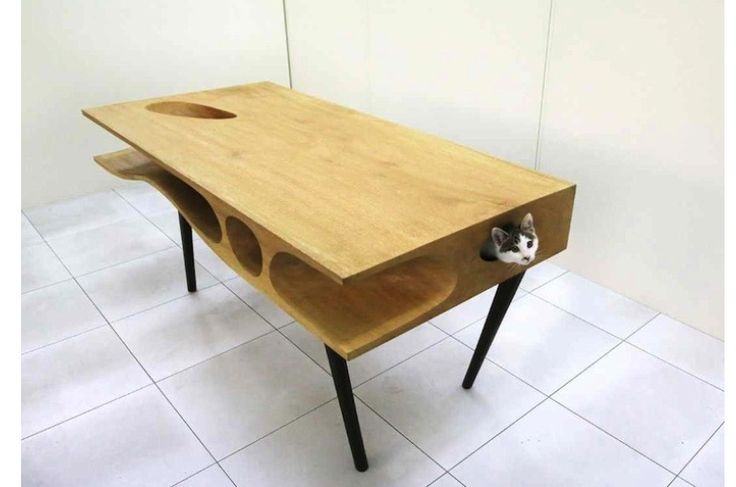 Cat lovers work desk.