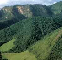 La deforestación y la ganadería avanzan sobre las selvas del Parque Nacional Natural Serranía de La Macarena, con la consecuente pérdida de ...