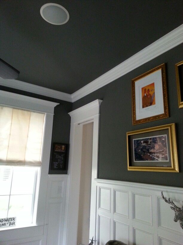 Gray walls and ceiling for the Dining room!