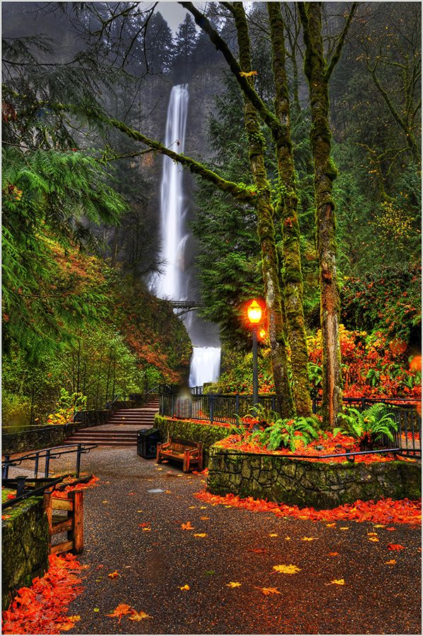 Multnomah Falls, Oregon Top 15 Fascinating Places to Explore All Over The World