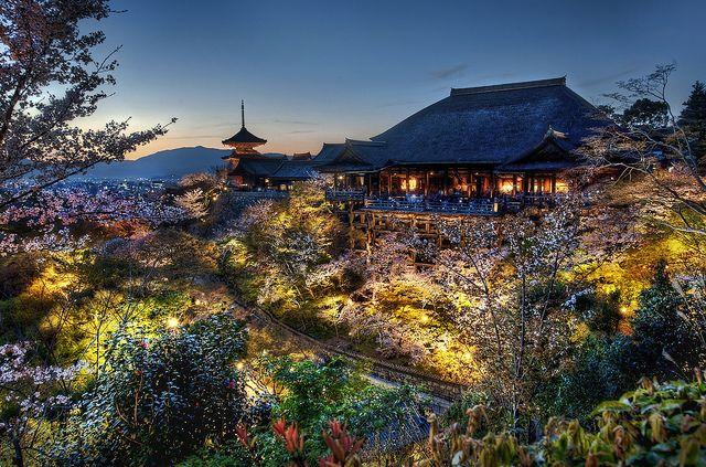 Home of the Tree Samurai - Kyoto, Japan