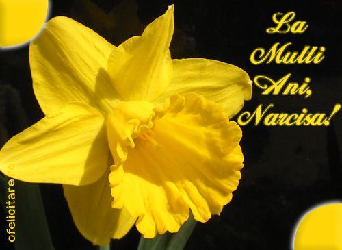 Felicitare de Florii cu mesajul La multi ani, Narcisa!
