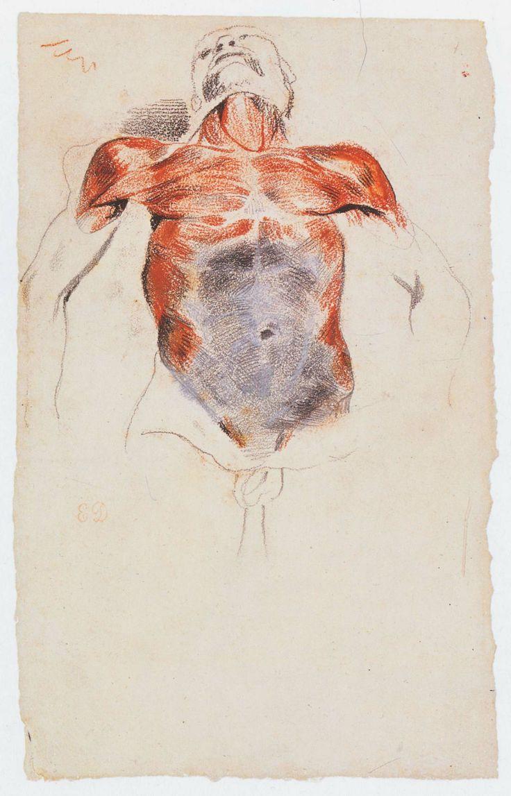 eugene delacroix etude decorche torso dun cadavre karen