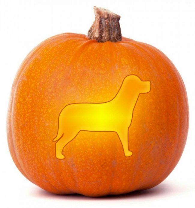 Halloween Kürbis schnitzen -vorlagen-hund-ausschneiden-form-keksenform