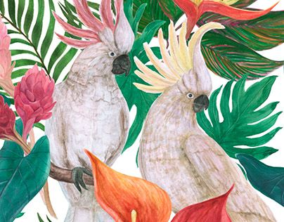 "Check out new work on my @Behance portfolio: ""Watercolor parrots pattern"" http://be.net/gallery/58929015/Watercolor-parrots-pattern"