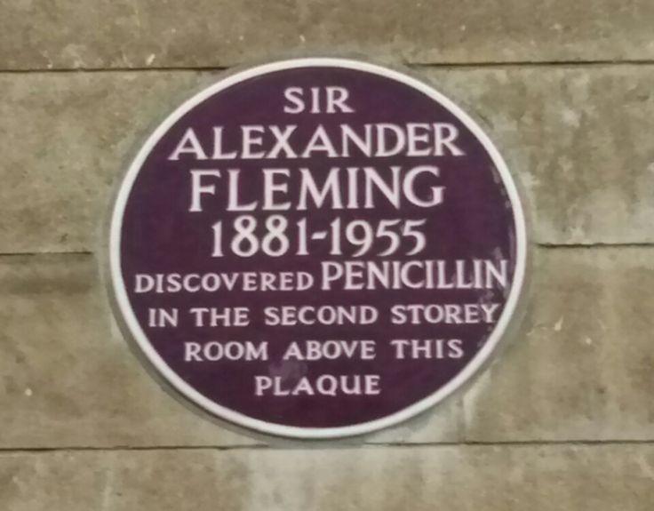 ¿Quién descubrió la penicilina: Alexander Fleming o Clodomiro Picado? | El rincón de Pasteur | SciLogs | Investigación y Ciencia