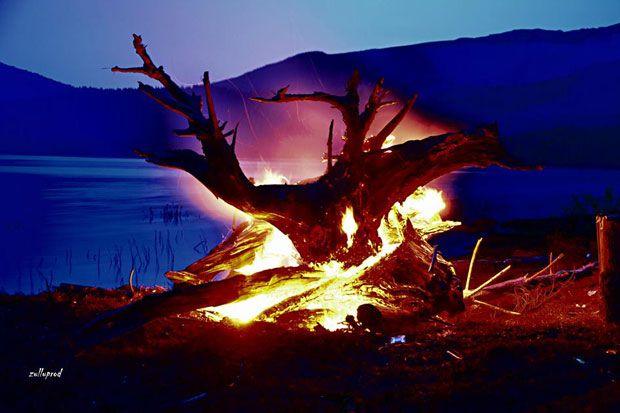 I-am provocat pe prietenii nostri de pe Facebook sa ne trimita cele mai interesante fotografii realizate de ei. Cornel Gusat  a realizat o fotografie deosebita pe malul lacului de acumulare Vidra, ...