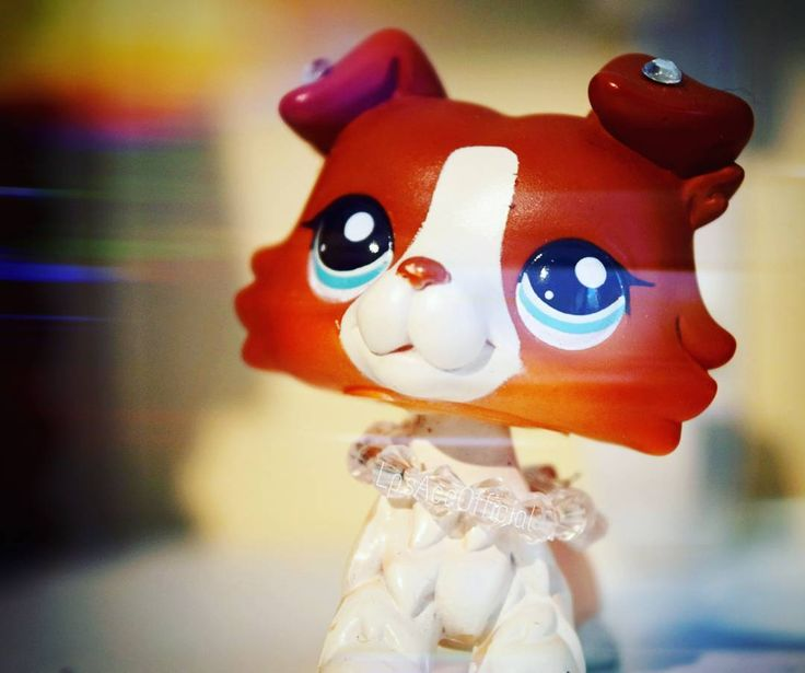 I just LOVE this LPS Collie SOOOO MUCH <3 and that is why im happy to have it in my collection