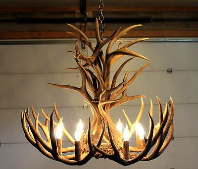 17 Best images about Deer lights – Real Deer Antler Chandelier