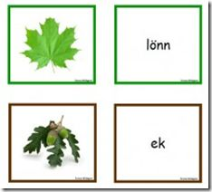 Trädmemory, fågelmemory och svampmemory Emma bjuder på trädmemory, fågelmemory och svampmemory med foton och text att matcha till. Fina material som alltid!