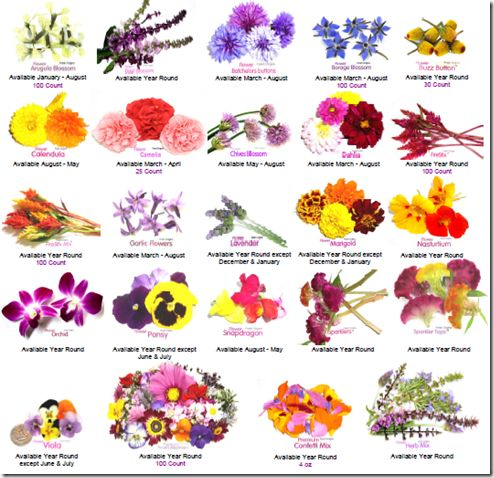 Would like to plant some edible flowers on my deck this spring to go with the herbs. This looks like a good guide to flavors of flowers.