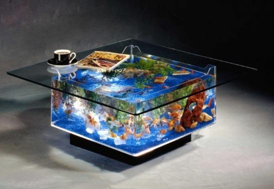 Coffee table fish tank. :)