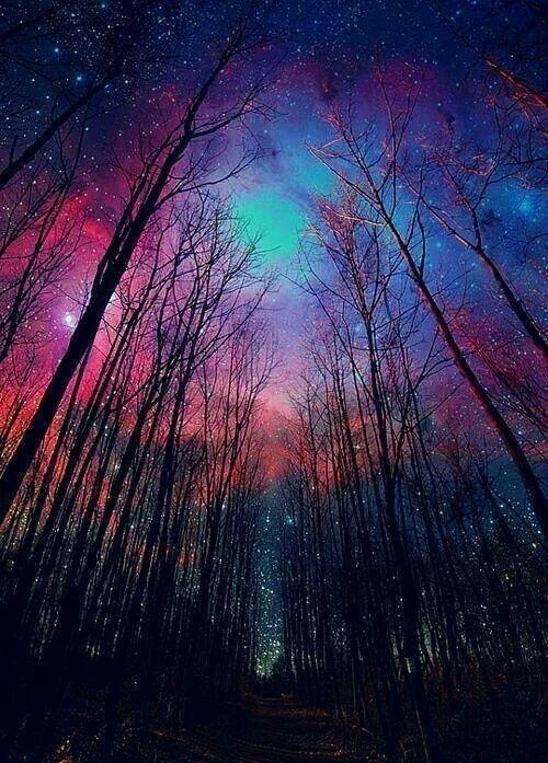 The darker the night, the brighter the stars. www.wearehumanangels.com