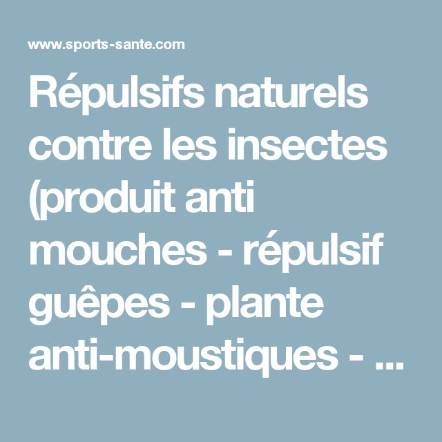 Les 25 meilleures id es concernant plantes anti moustiques sur pinterest r pulsif insectes - Plante anti mouche maison ...