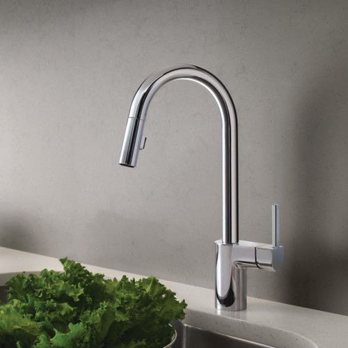 Found it at AllModern - Align Single Handle Kitchen Faucet