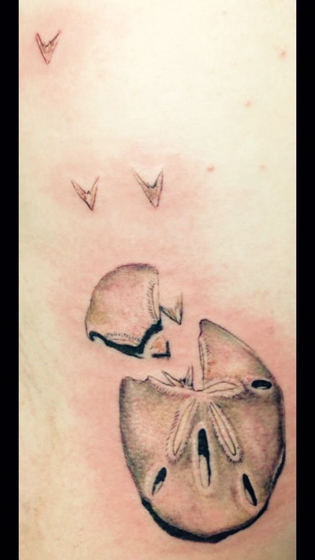 34 best Tattoos images on Pinterest | Tattoo ideas, Sand dollars and ...
