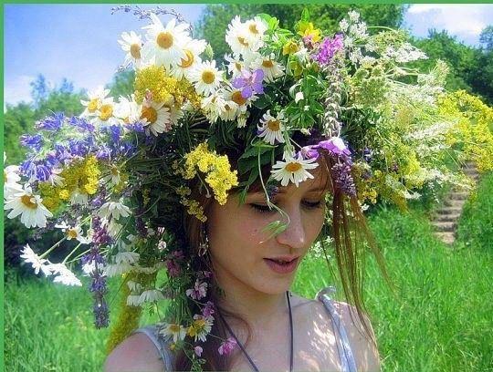 wianek, polne kwiaty