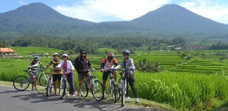 Велотур Кинтамани,  экскурсии на бали, бали экскурсии, экскурсии бали, экскурсии на бали цены, экскурсия бали, экскурсия на бали, стоимость экскурсий на бали, остров бали экскурсии, экскурсии бали индонезия, экскурсии на острове бали, экскурсии по индонезии, отдых на бали экскурсии, бали ява экскурсии, трансфер на бали, бали, серфинг, дайвинг, круизы, рафтинг, рыбалка, сафари парк, сафари на бали,  экскурсии на комодо и флорес http://balilive.ru/excursions/velotur-kintamani-13.html
