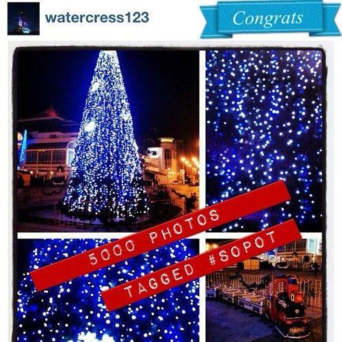 9.12.2012 #5000 photos with #Sopot tag. Congrats to all #igers and @watercress123 #pomorskie #christmas #tree #igersgdansk #igerspoland #poland #polska #night #bynight #instamood #instagood  (at Plac Przyjaciół Sopotu)