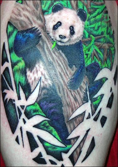 Miami Ink:  panda bear: TLC