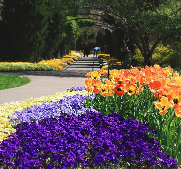 Cheekwood Botanical Garden, Nashville, TN