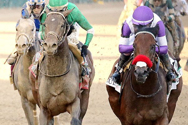 Slew of reasons Nyquist can keep his Triple Crown hopes alive in the Preakness : Hombres Mag For Men