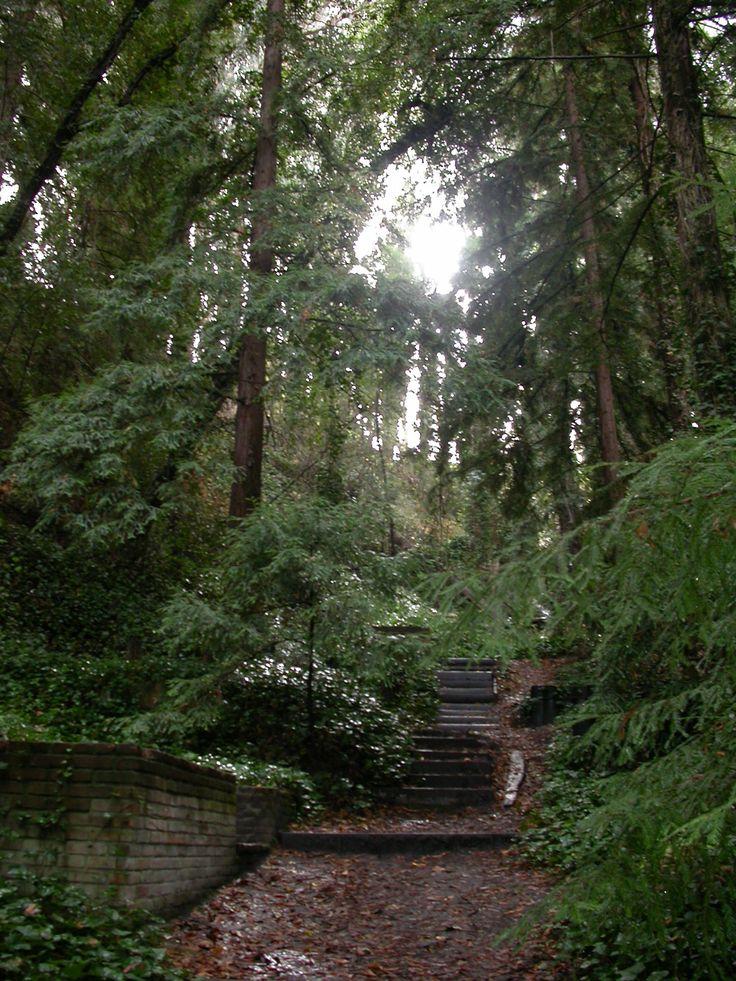 Evergreen Cemetary