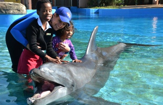 Impaired learners meet dolphins at uShaka