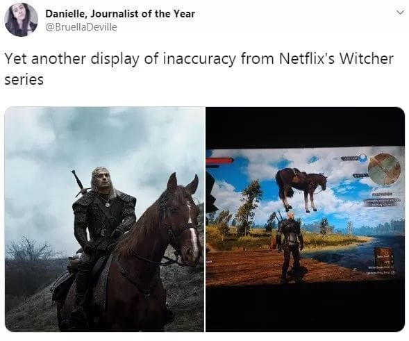 Netflix Adaptations Being Shit As Usual The Witcher Cute Cats And Dogs Netflix