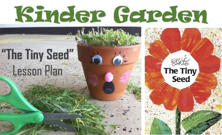 Kinder Garden: The Tiny Seed Lesson Plan