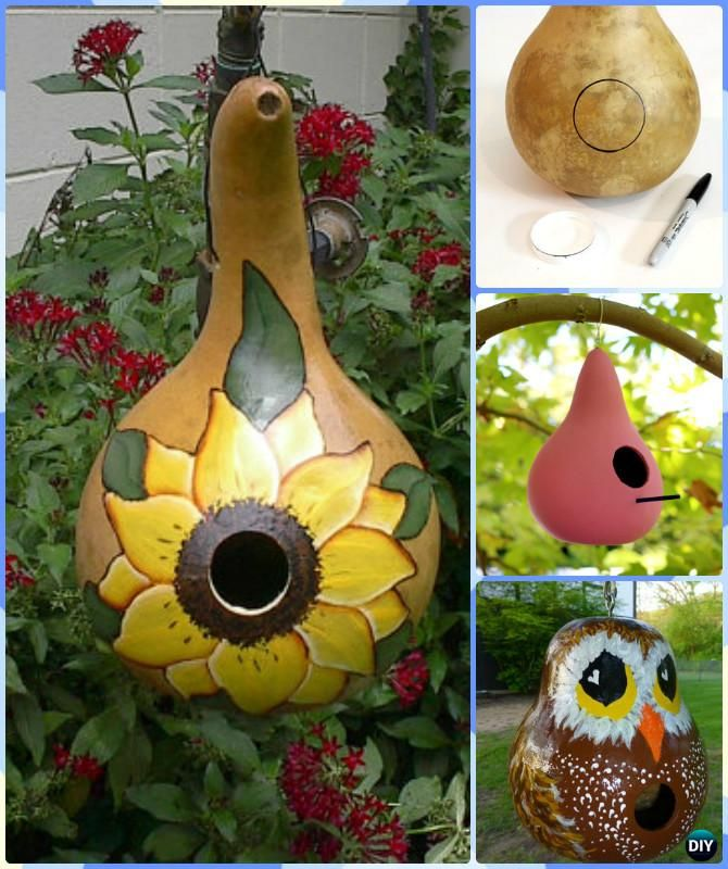 Diy gourd bird house instruction diy gourd craft projects for Where to buy gourds for crafts