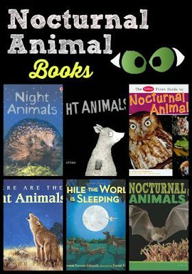 Book ideas for learning about nocturnal animals