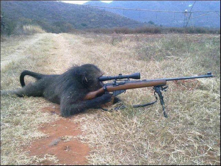 Смешные картинки снайпера