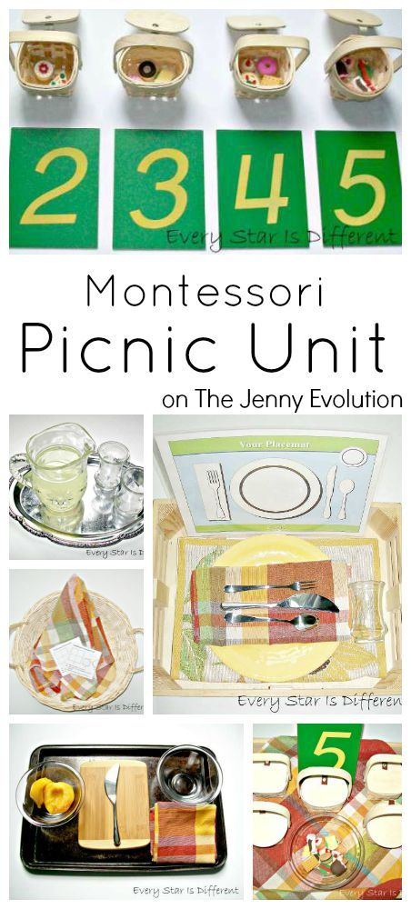 Montessori Picnic Activities Unit by Renae from Every Star Is Different at The Jenny Evolution
