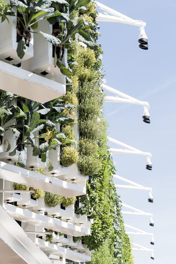 USA Pavilion Expo Milano 2015 | Biber Architects in collaboration with Genius Loci Architettura S.r.l., Nussli Italia S.r.l., dlandstudio, Tillotson Design Associates, Thinc Design, Pentagram, ESA Engineering, SCE Project | Archinect