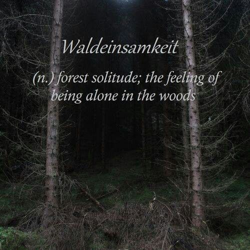 Forest Quotes: 436 Best Images About Nature Quotes On Pinterest