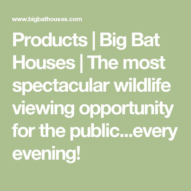 Products | Big Bat Houses | The most spectacular wildlife viewing opportunity for the public...every evening!